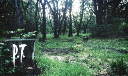 In Memoriam – Silent Hills (P.T.)